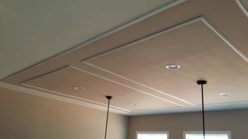Ceiling Treatment of panel mouldings & accent painting
