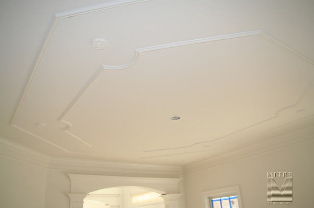 Ceiling Trim - double run with rosettes